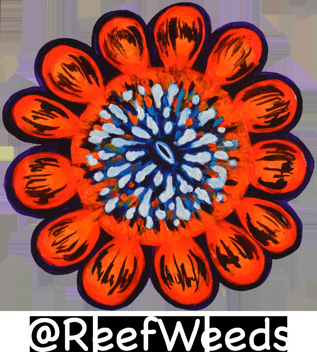 About reefweeds reefinspired art. Orange clipart coral reef