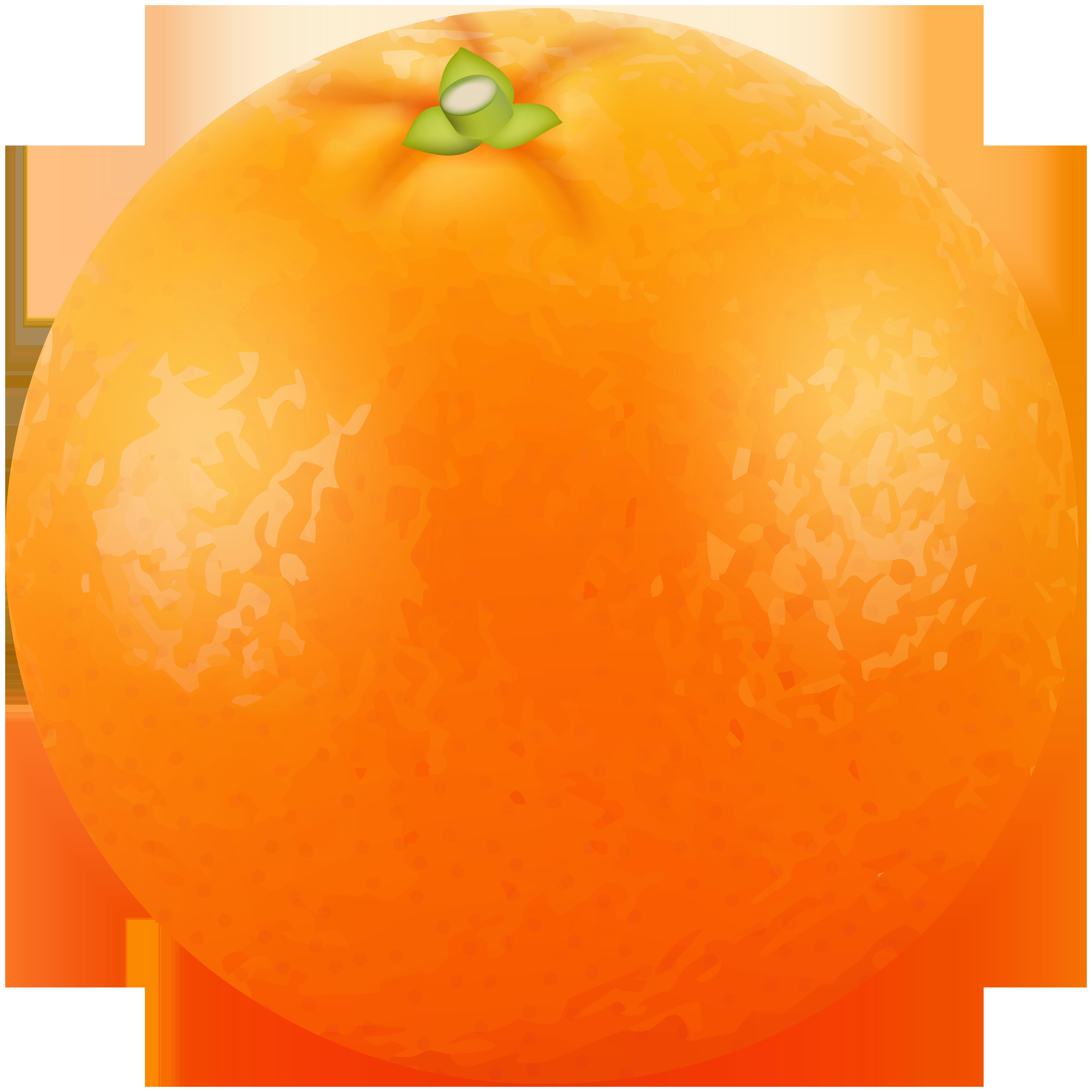 Png clip art image. Orange clipart orange fruit