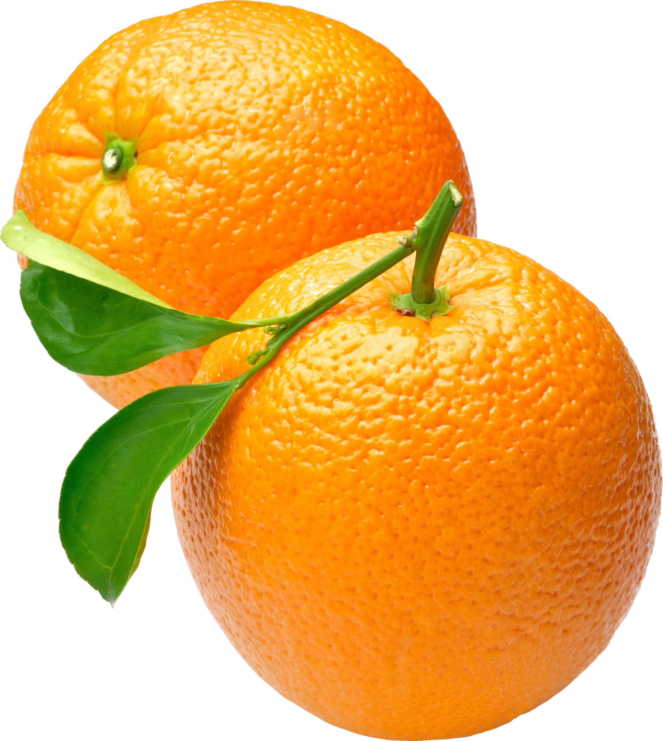 Orange clipart orange fruit. Icon web icons png