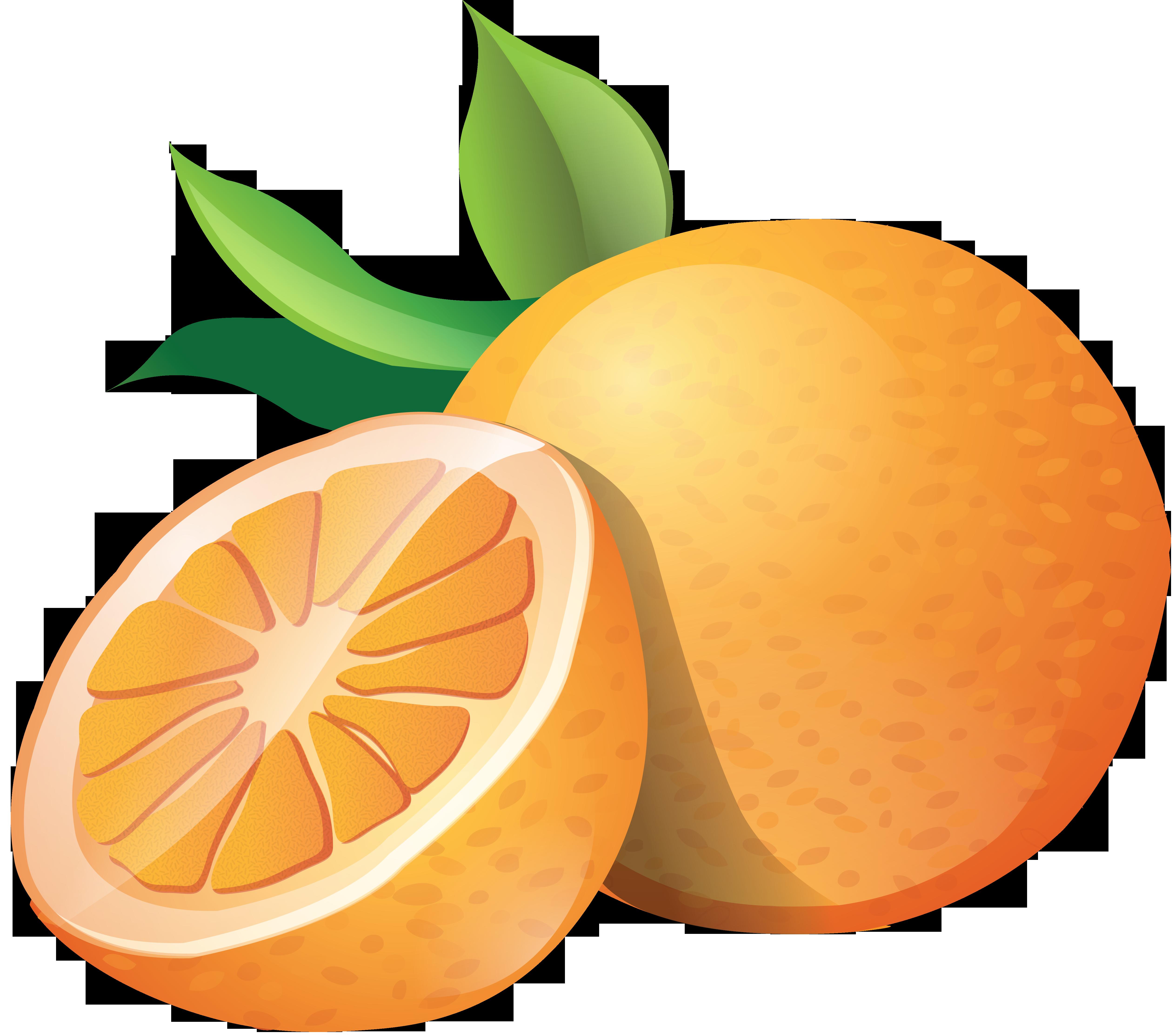 Oranges png image purepng. Orange clipart orange fruit