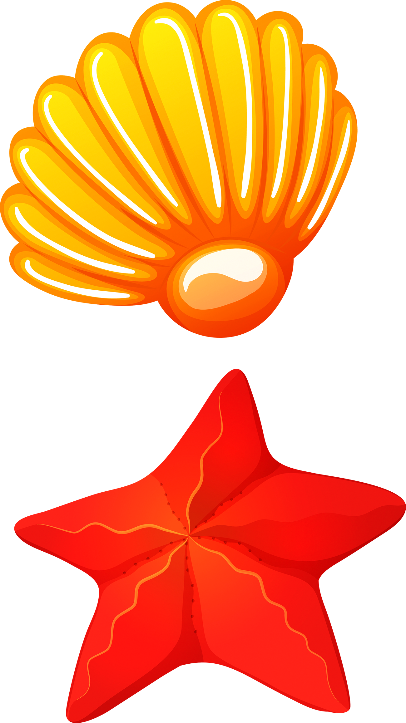 Shell clipart red clipart. Seafood seashell clip art