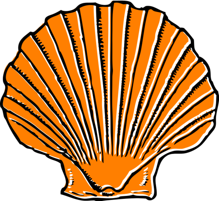 Page of bclipart blue. Orange clipart seashell