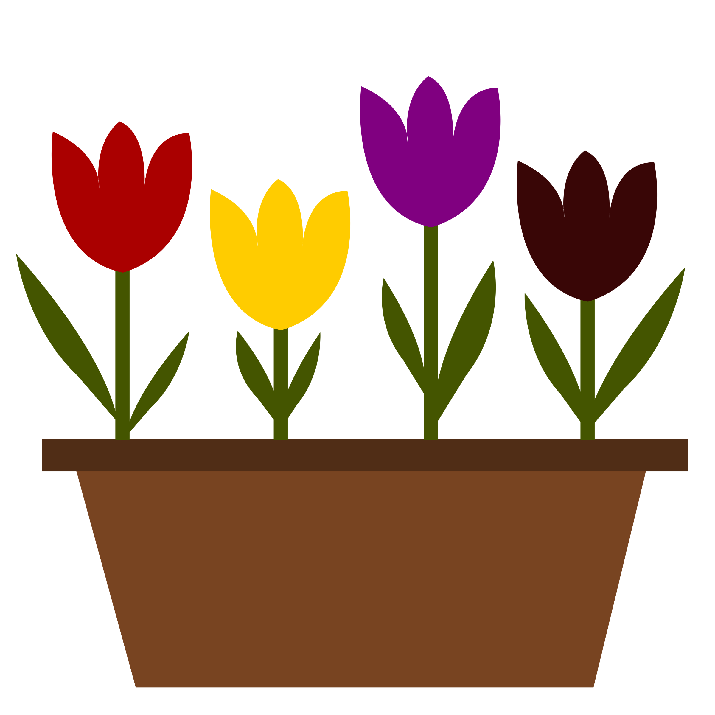 Poppy clipart potplant. Tulips in a pot