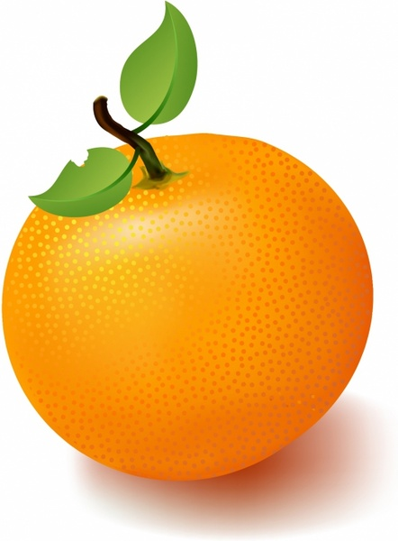 Fruit free vector download. Orange clipart