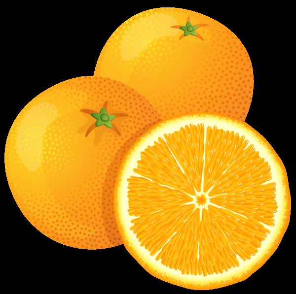Oranges clipart. Orange png image purepng