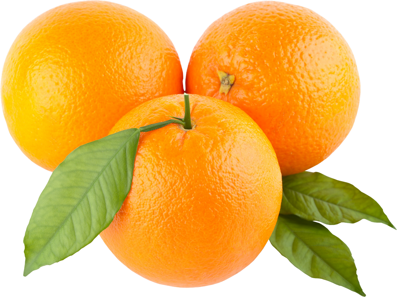 Clipart fruit orange. Oranges png image purepng