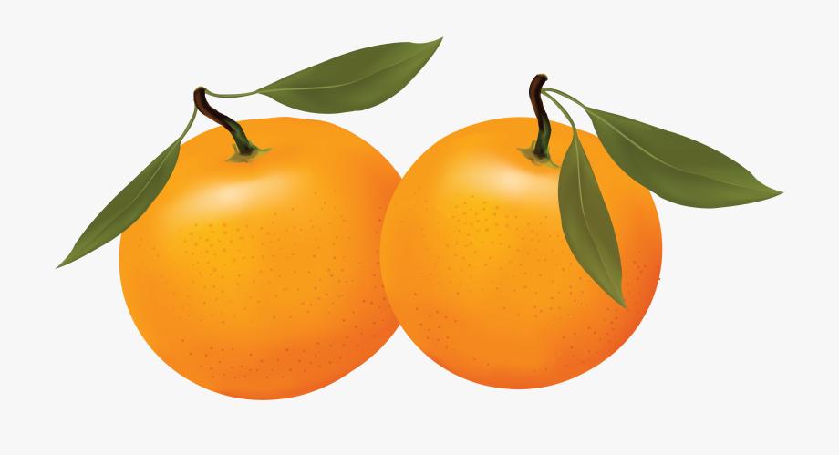 Oranges png free . Orange clipart orange fruit