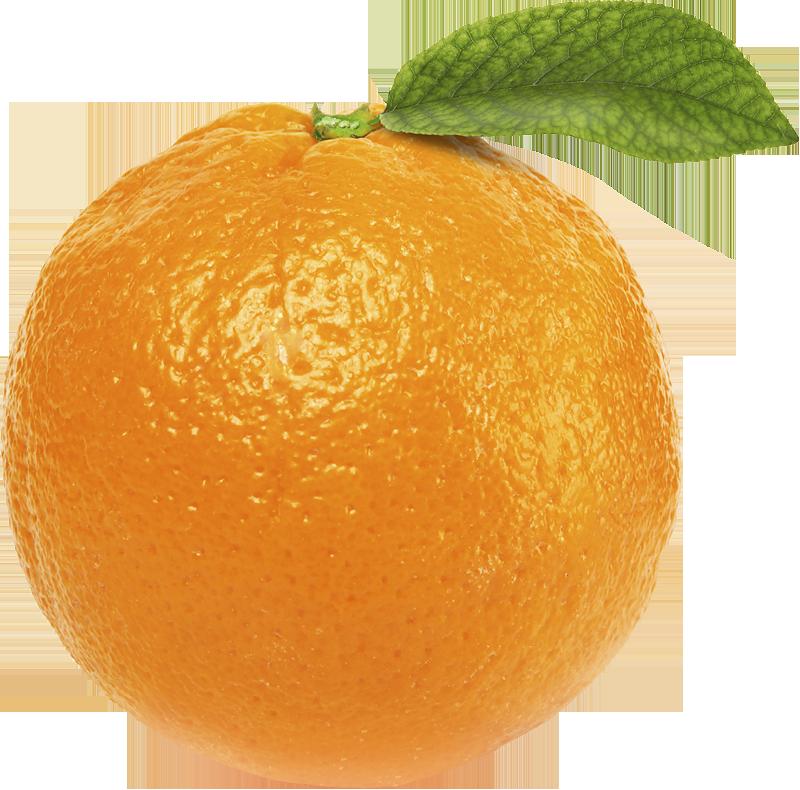Oranges 2 orange