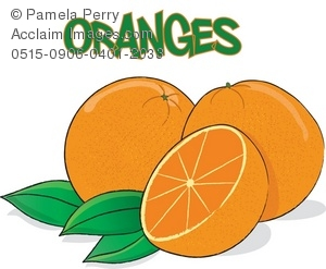 Clip art illustration of. Oranges clipart