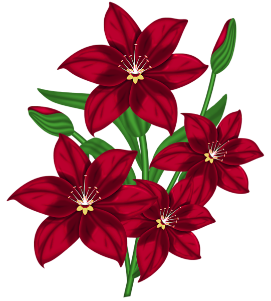 Oranges clipart lilies. Forgetmenot flowers red
