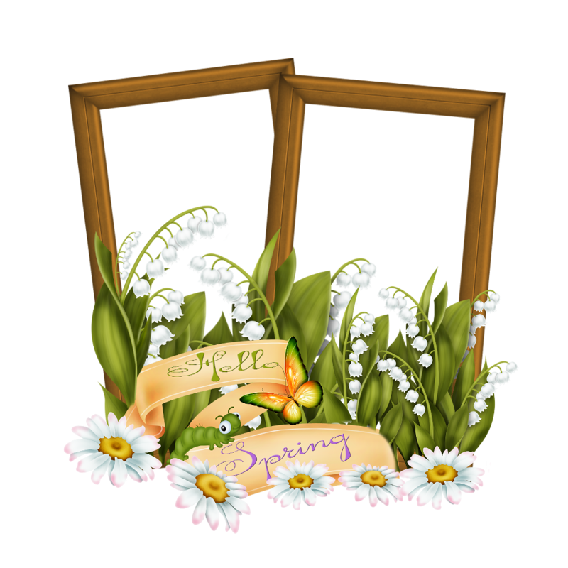 Forgetmenot flowers of the. Oranges clipart lilies