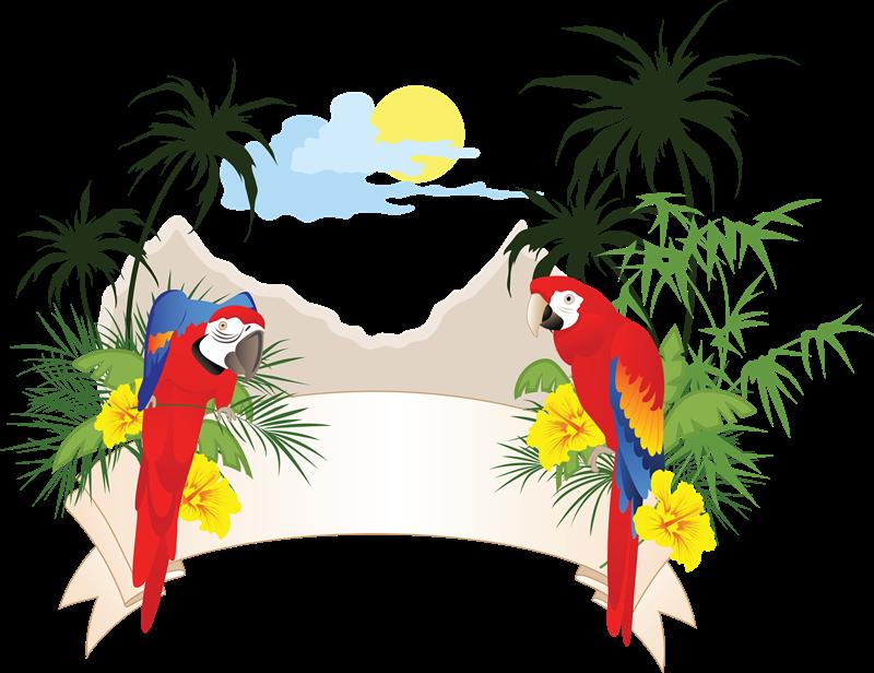 Forgetmenot birds parrots cluster. Oranges clipart parrot