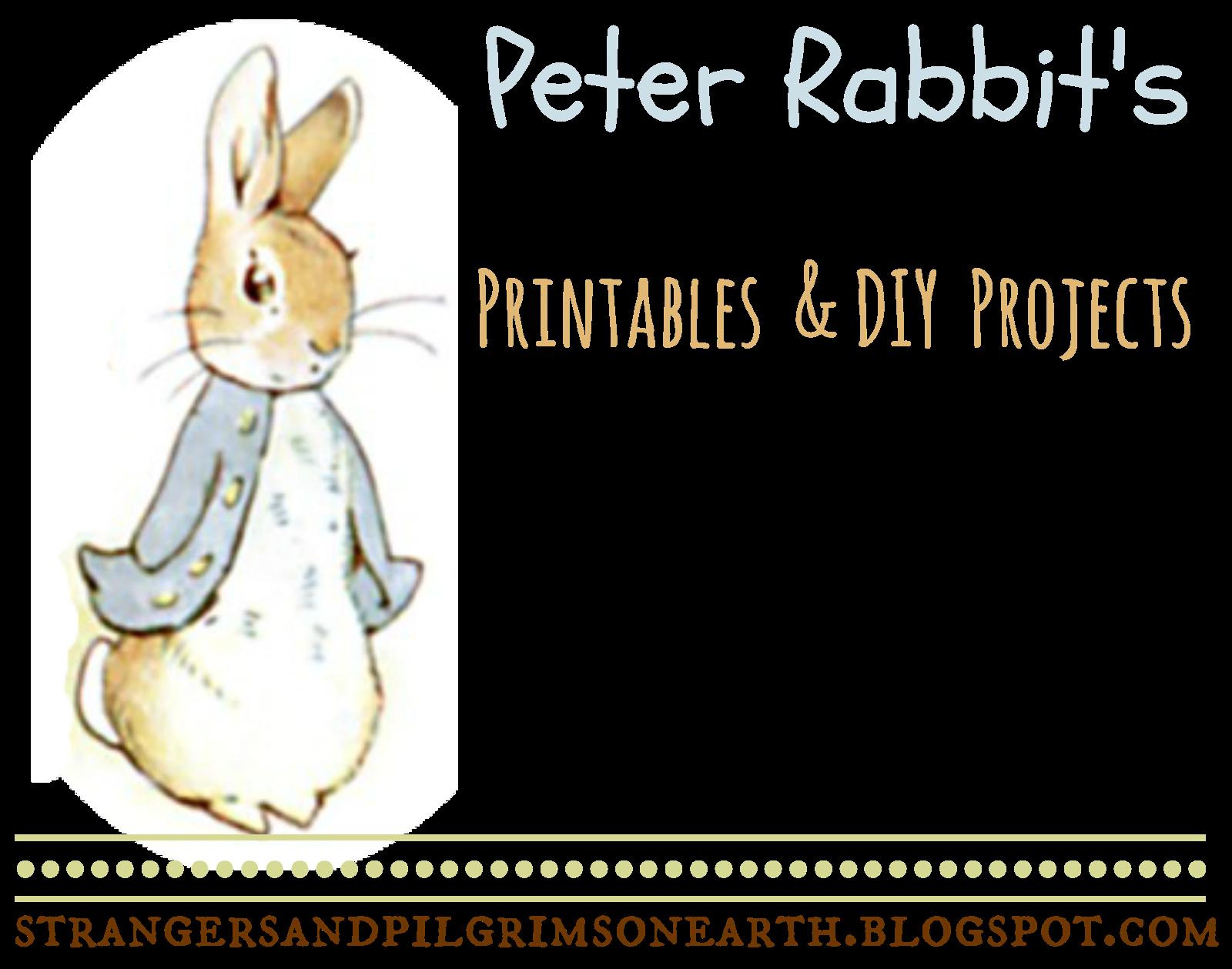 Strangers pilgrims on earth. Oranges clipart rabbit