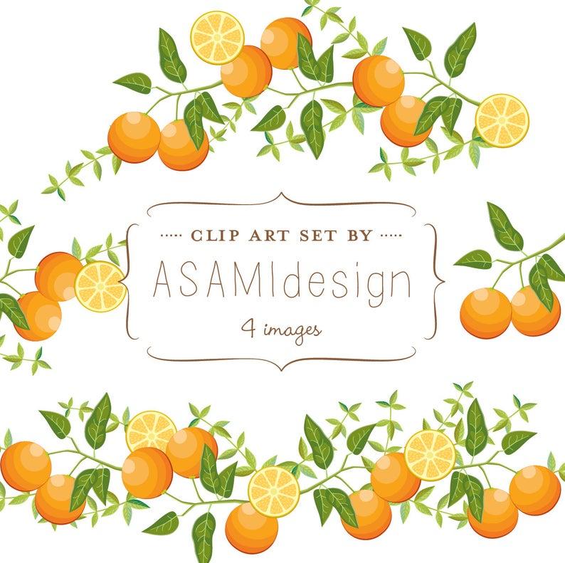 Oranges clipart slipper. Orange clip art fruits