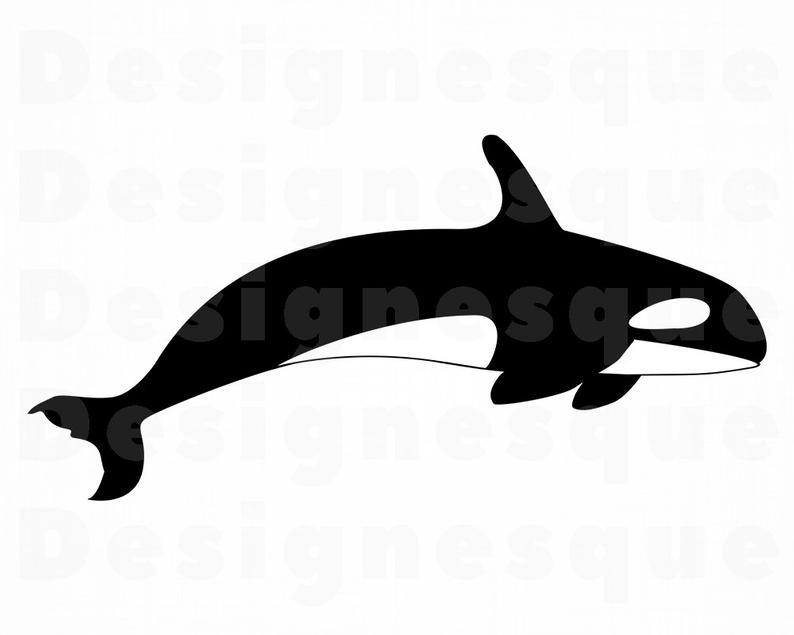 Orca clipart. Killer whale svg files