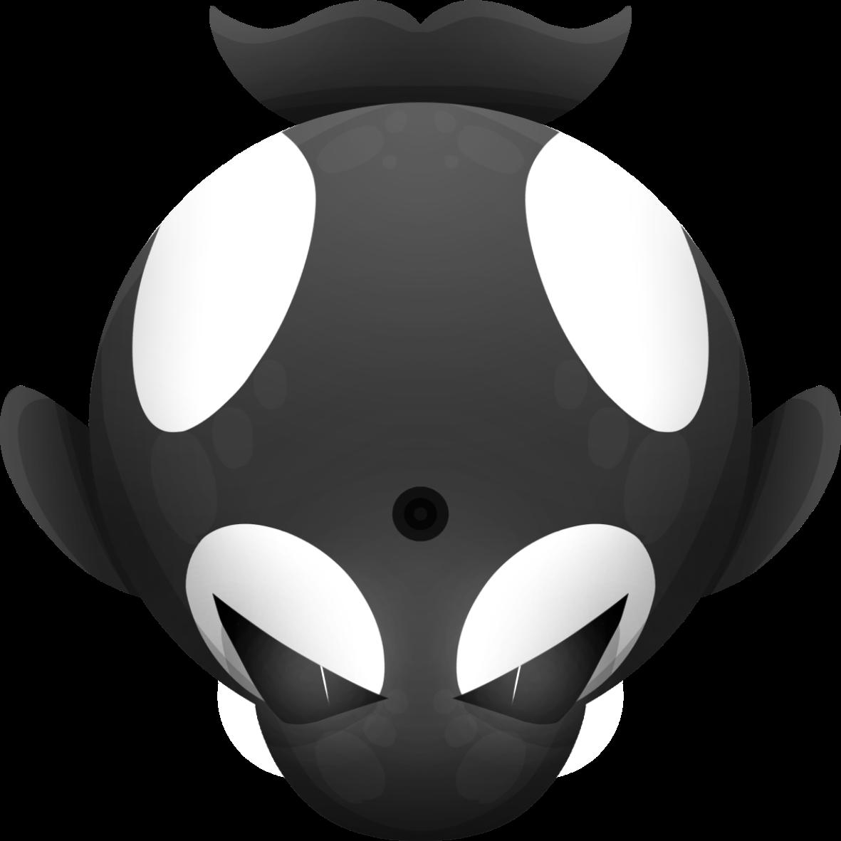 Orca clipart animation. Hd my dudes mopeio