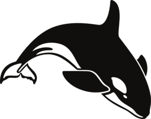 Orca clipart big whale. Pin by the frog