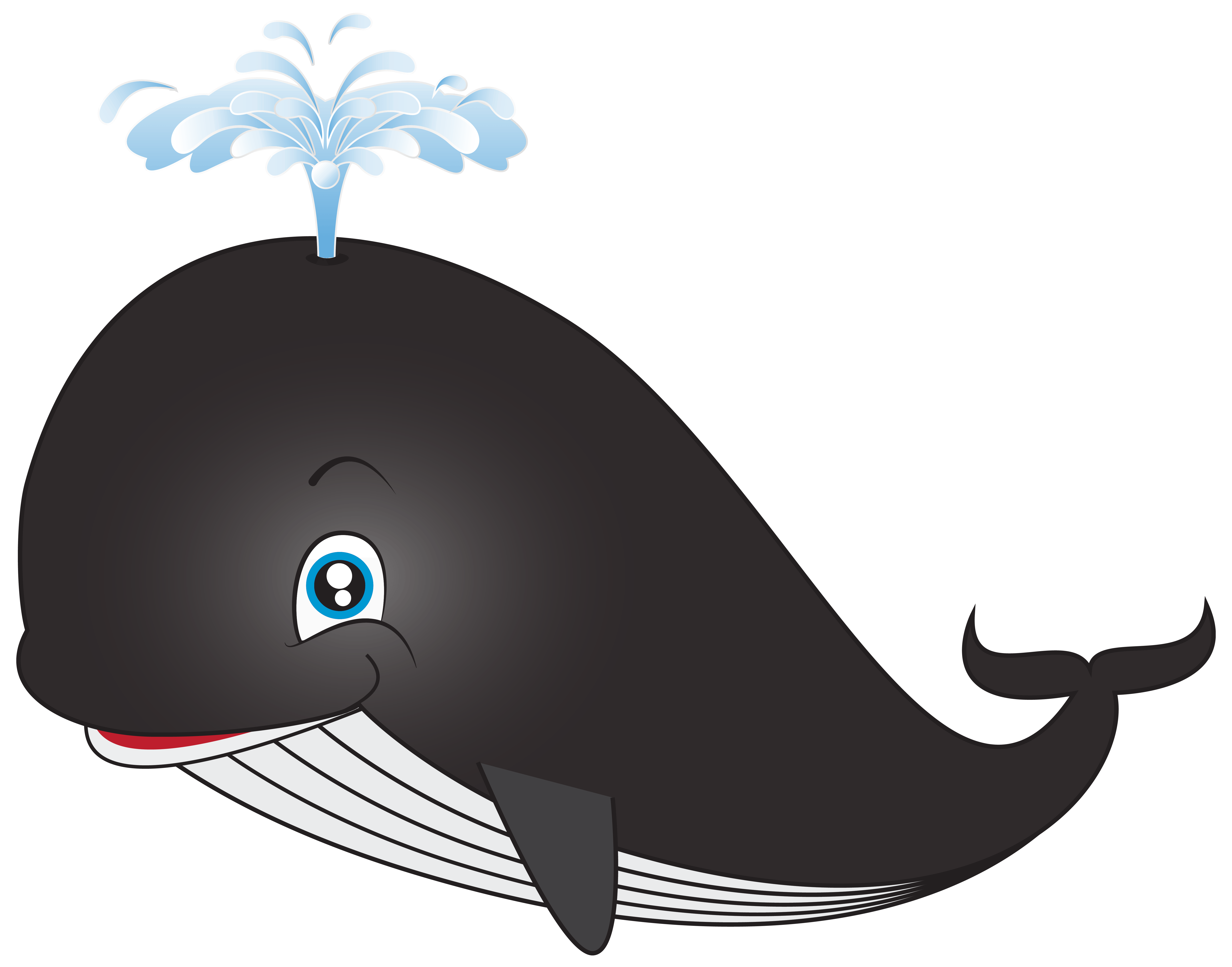 Beluga whale gray free. Orca clipart coloring page