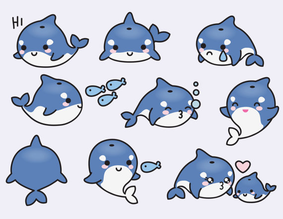 Premium vector orcas cute. Orca clipart kawaii