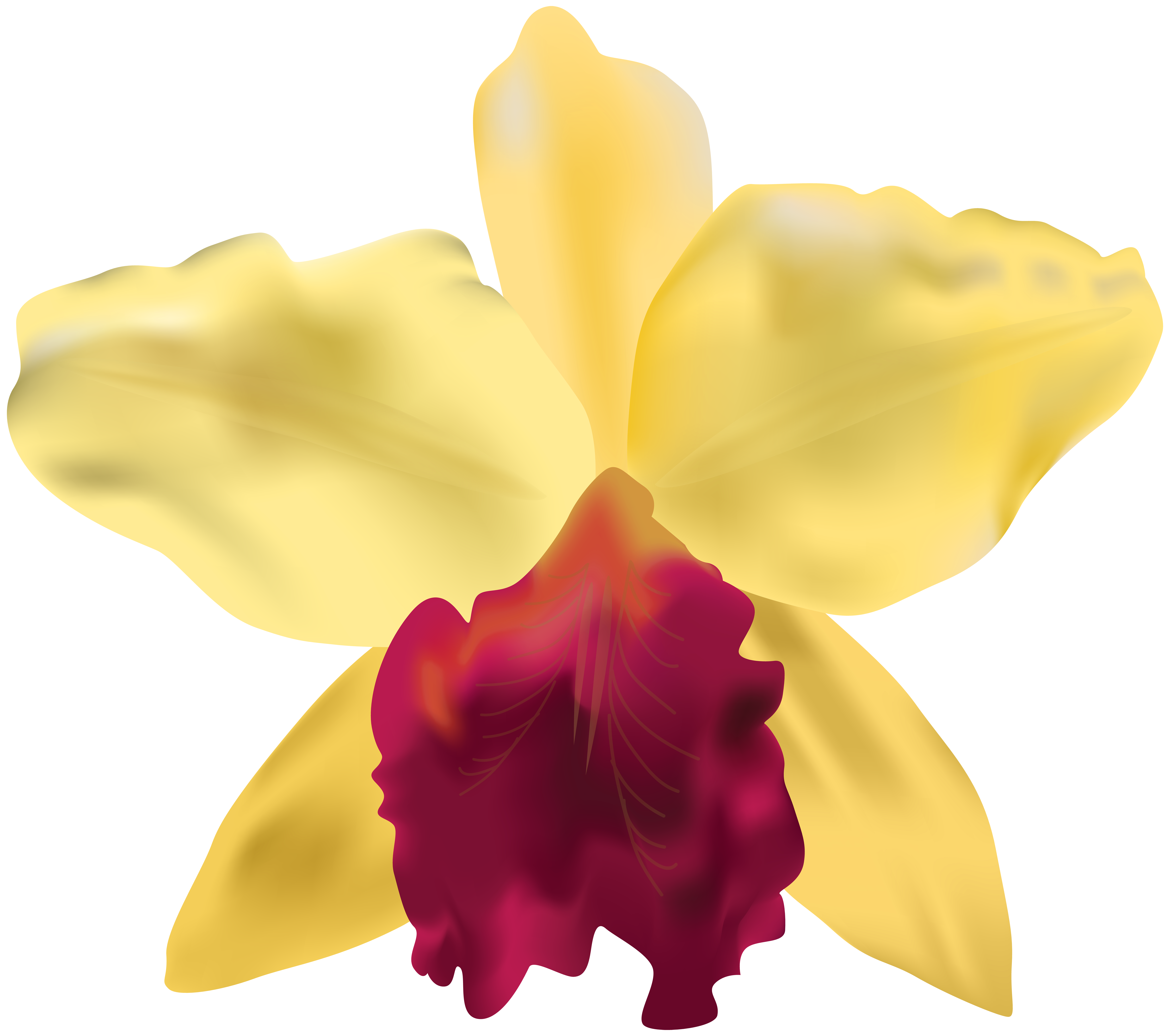 Flower at getdrawings com. Orchid clipart simple
