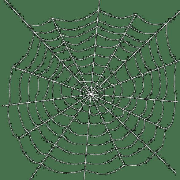 Spiderweb clipart spider diagram. Transparent background images romeo