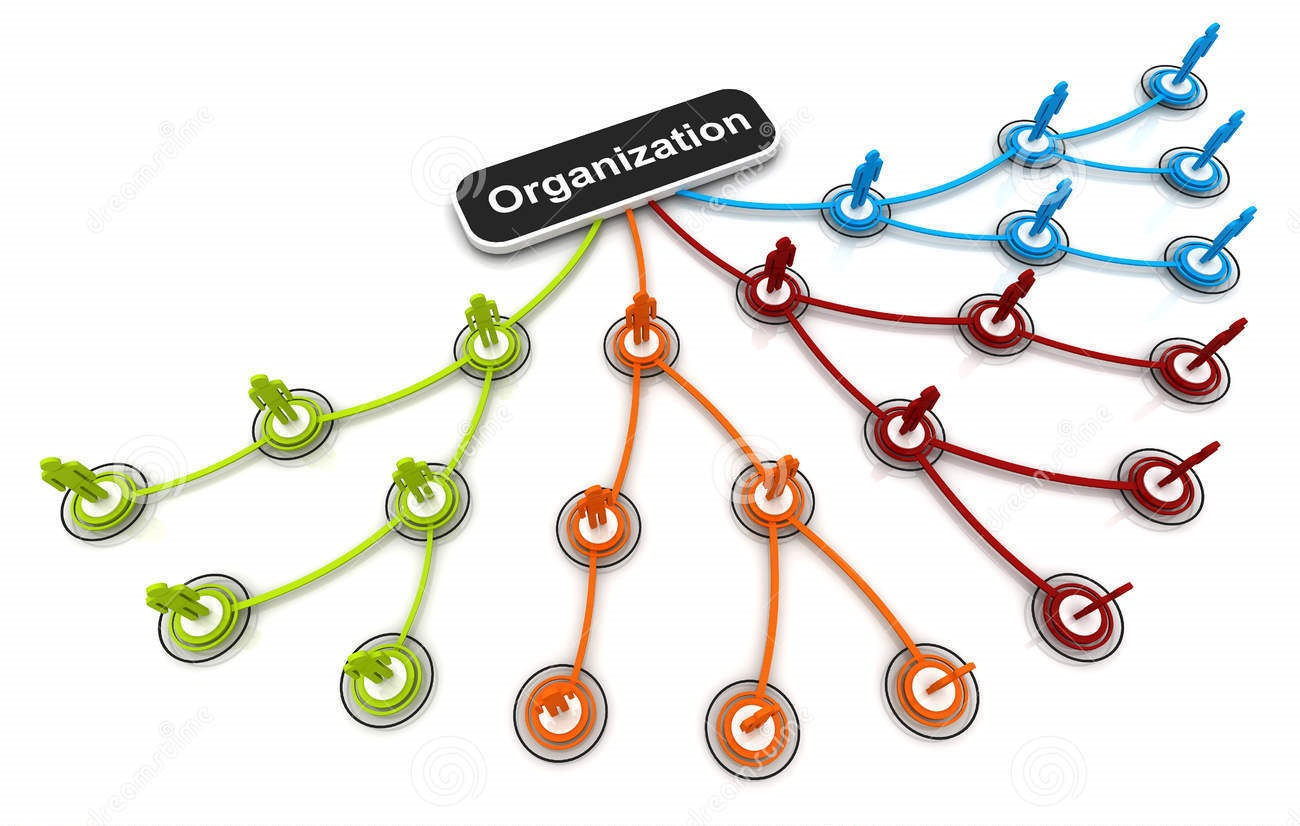 Maximize your skills organizational. Organization clipart organization skill
