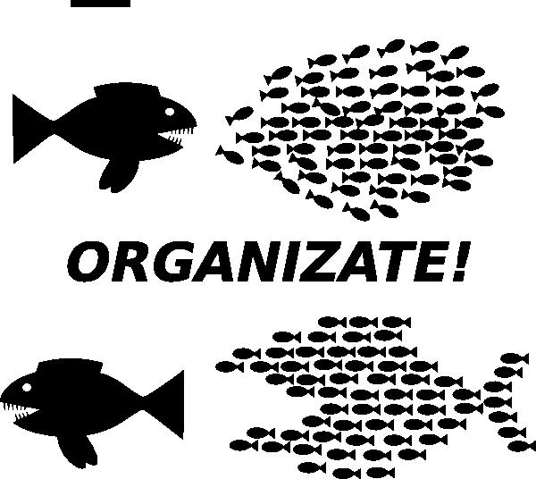 Organized clipart black and white. Organize fish picture clip