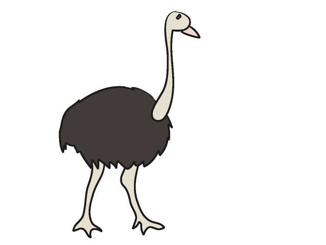 Ostrich clipart. Panda free images