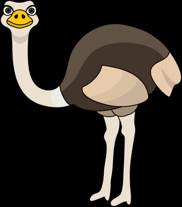 ostrich clipart ostrich head