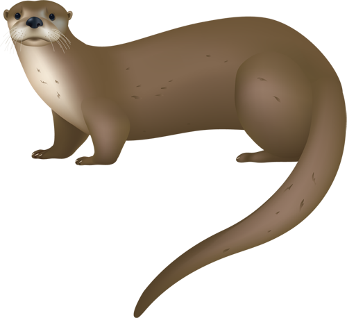 At getdrawings com free. Otter clipart
