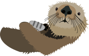 Otter clipart. With shell clip art