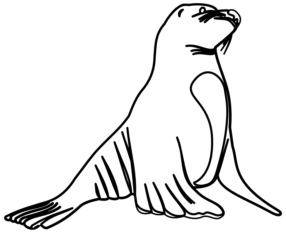 Elegant of lion black. Seal clipart sea otter