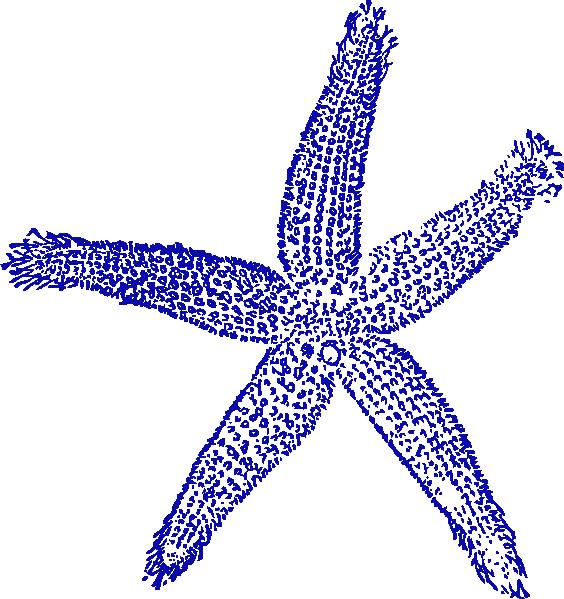Dark Blue Starfish Clip Art at Clker.com - vector clip art online ...