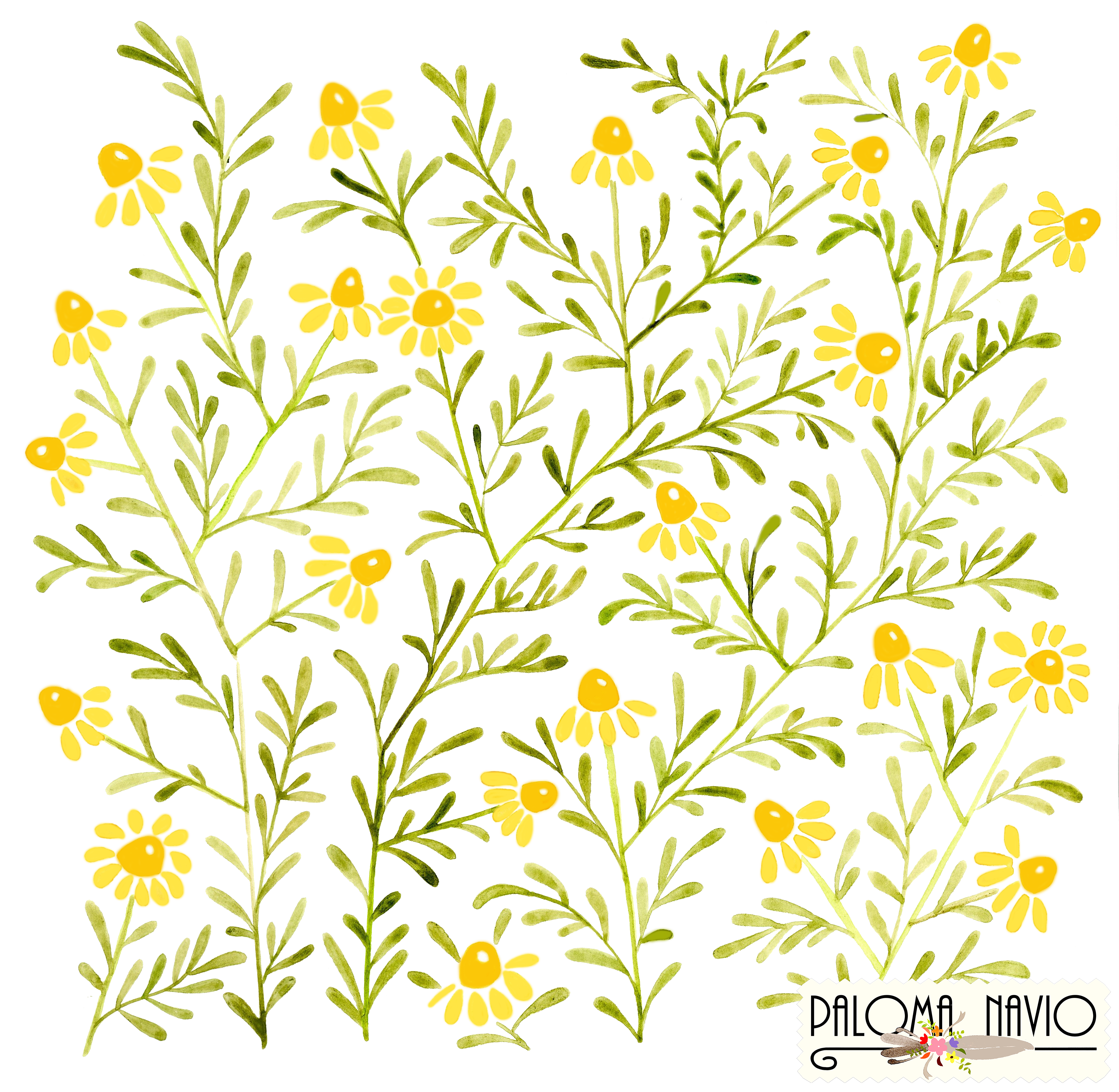 Wheat clipart watercolor. Yellow camomile flowers by
