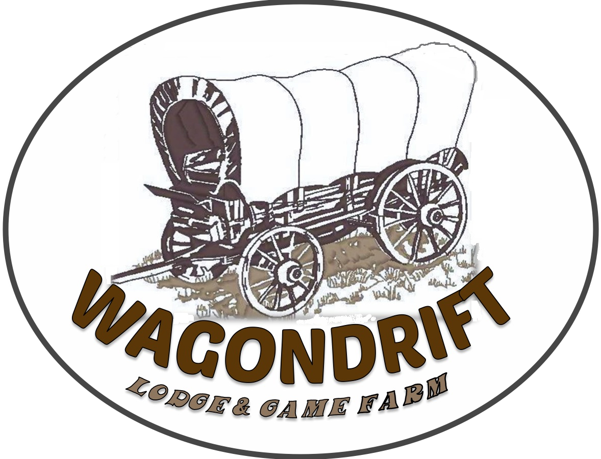 Accommodation wagondrift lodge. Ox clipart ox wagon