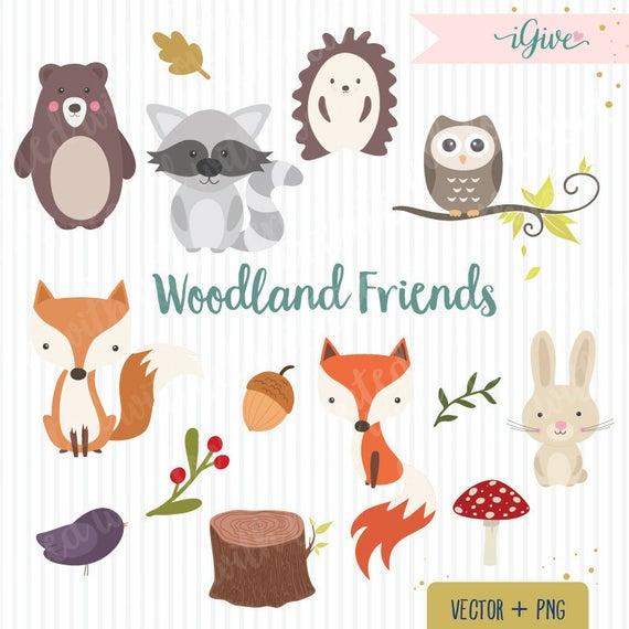 Animals clip art fox. Racoon clipart woodland owl