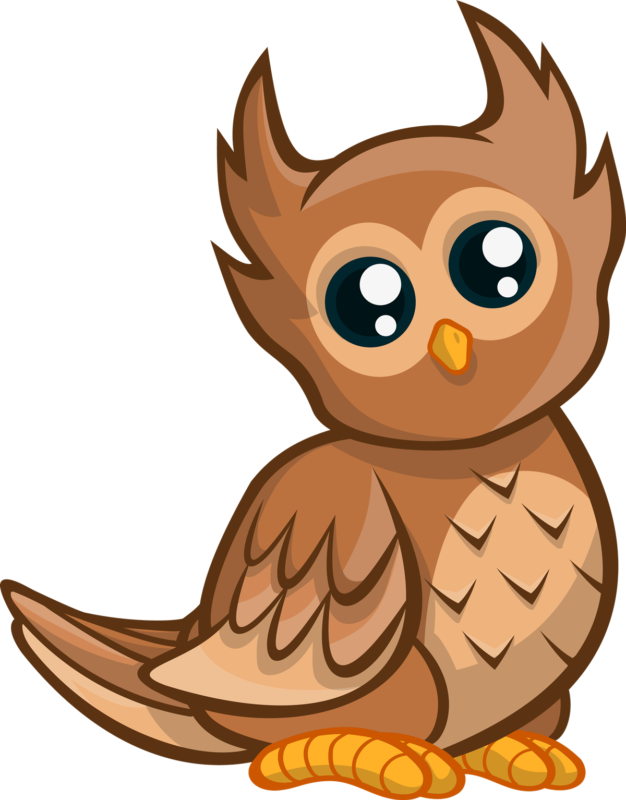 Free images photos download. Owl clipart orange