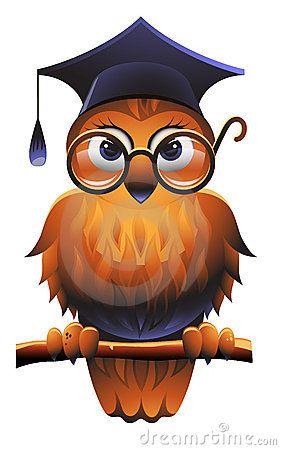 Vector illustration of owl. Owls clipart academic