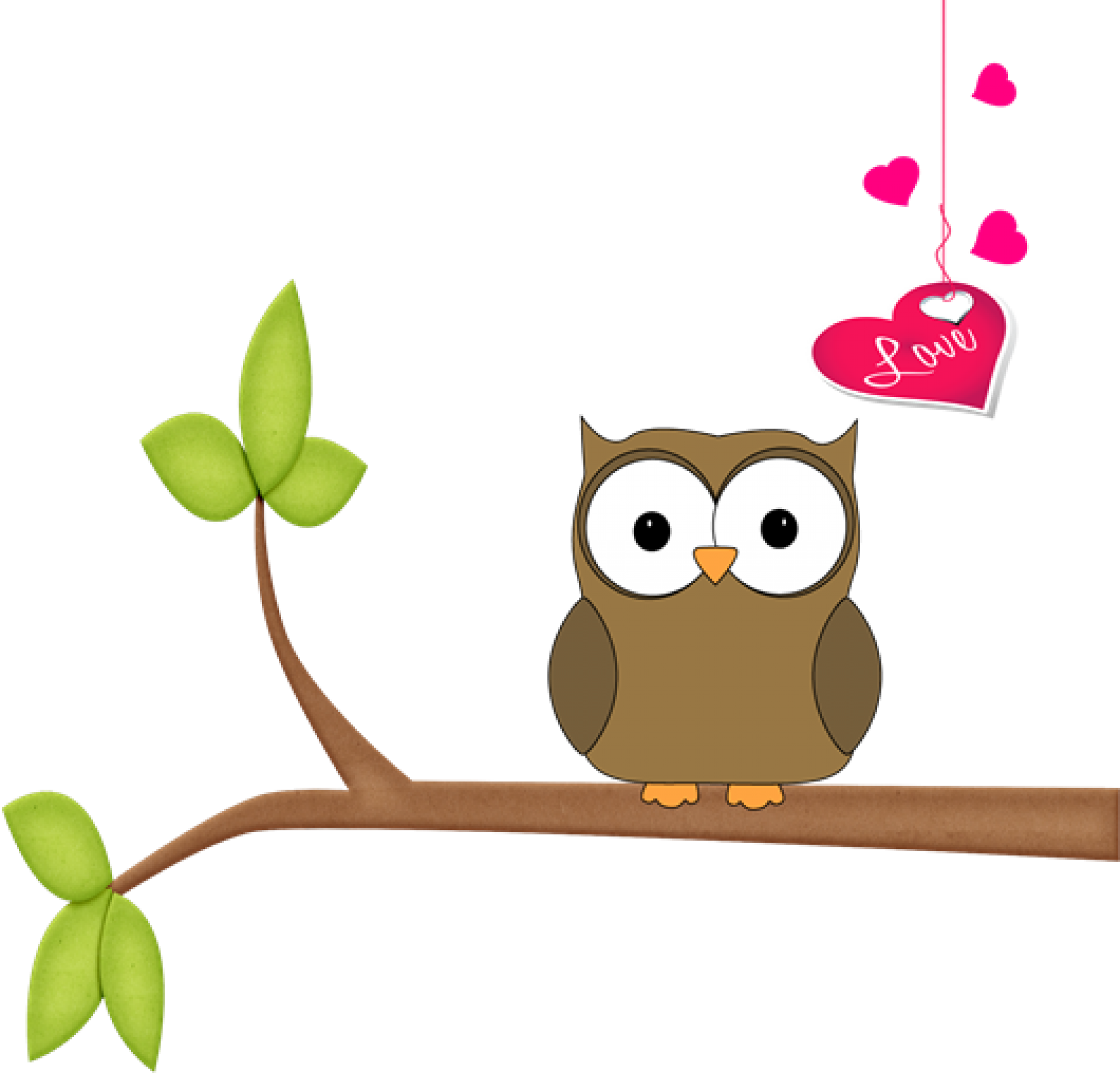 Owl lovers matching clothes. Owls clipart couple