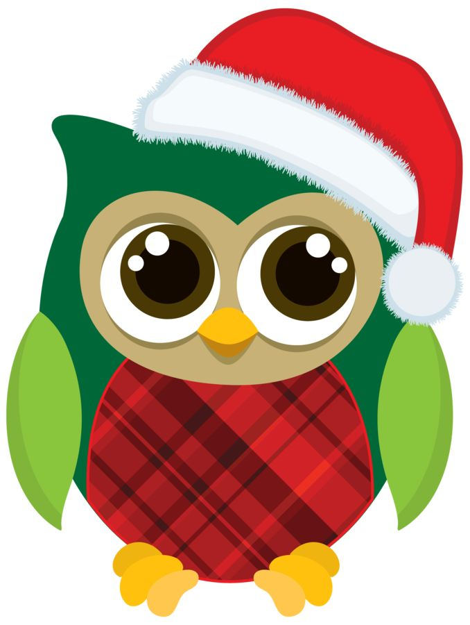 Owl . Owls clipart december
