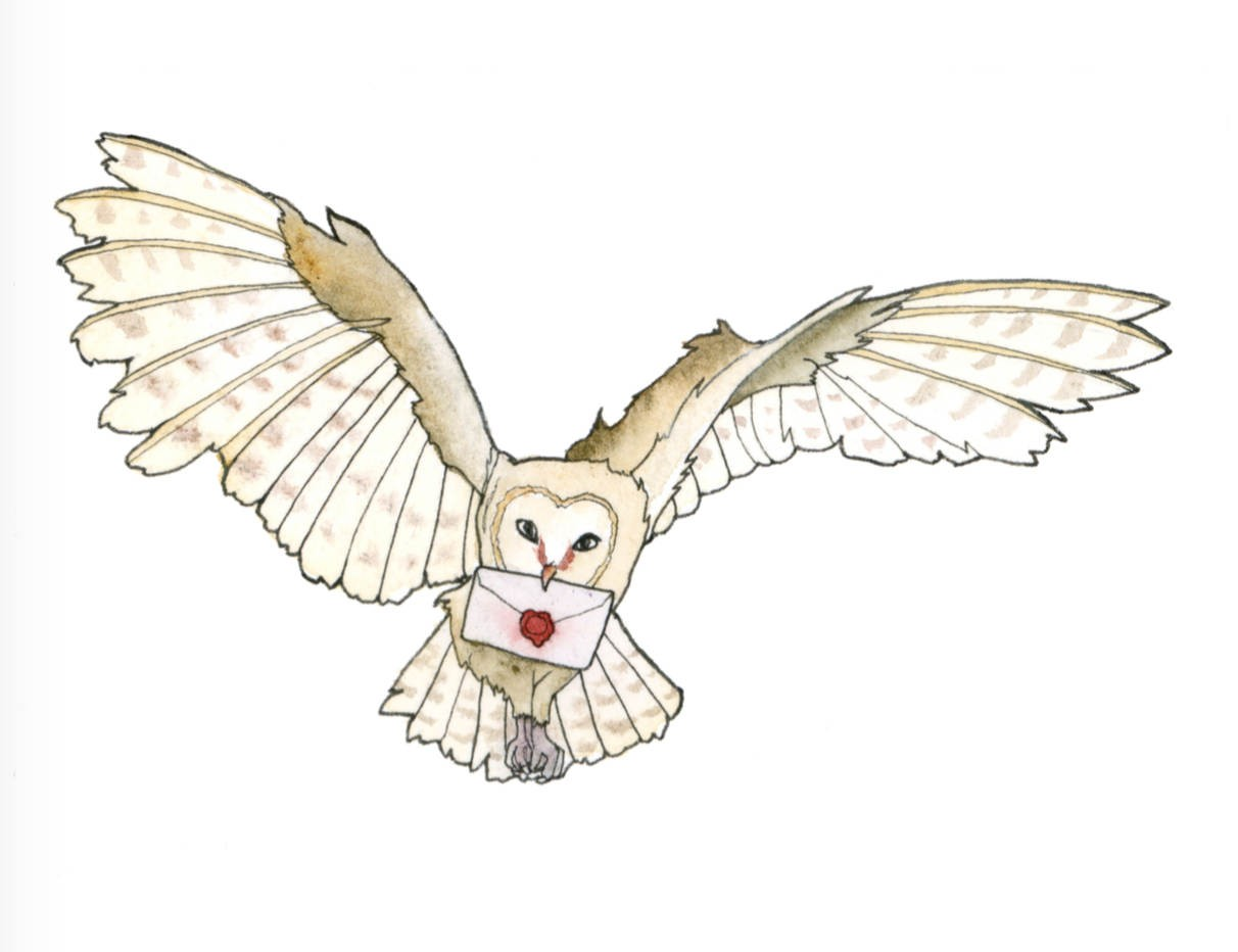 Flying owl clipart. Commercial use GIF, JPG, PNG, EPS, SVG, AI, PDF clipart  # 129461 | Graphics Factory