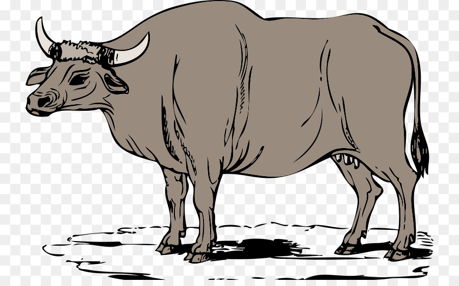 Ox clipart. Cattle website clip art