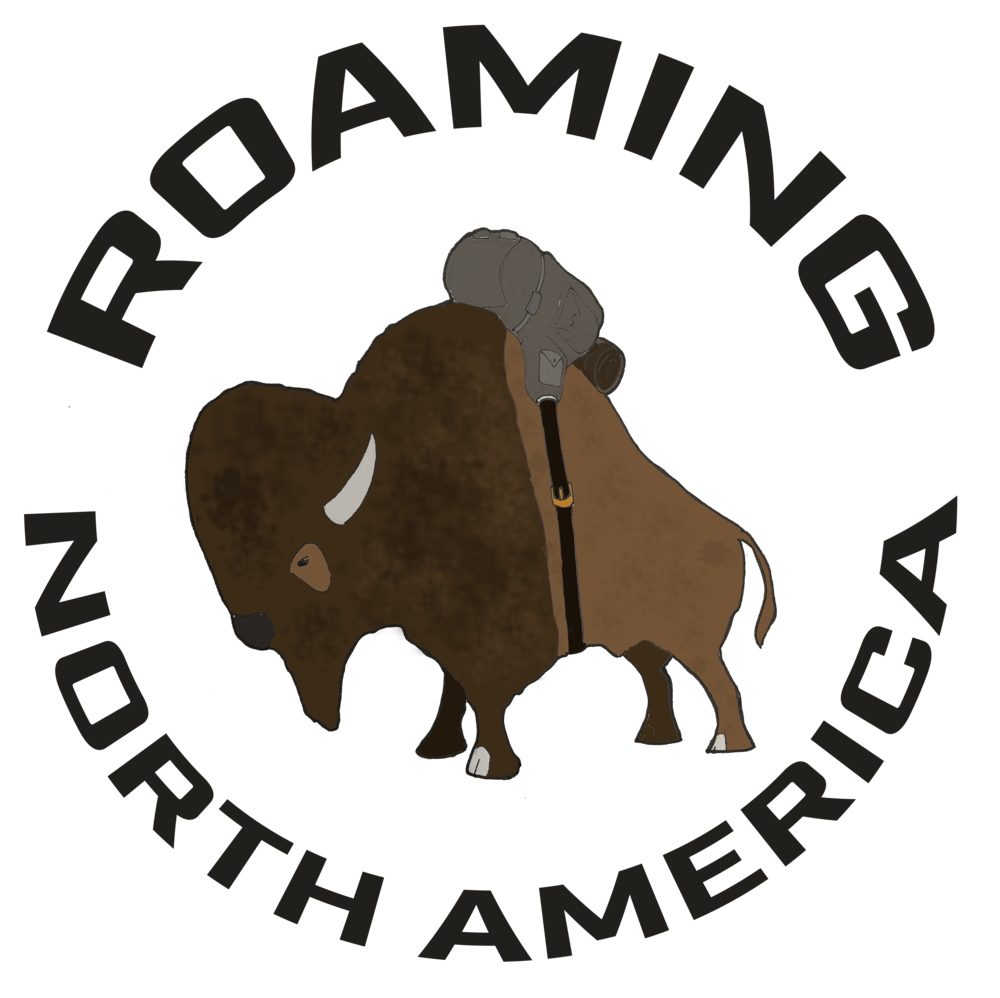 The hiace chronicles changes. Ox clipart american bison