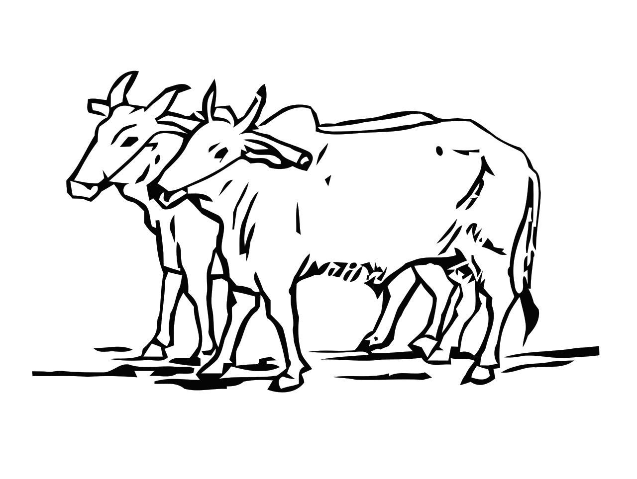 collection of drawing. Ox clipart black and white
