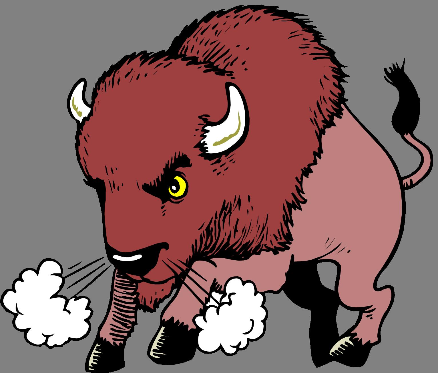 Water buffalo american bison. Ox clipart cartoon