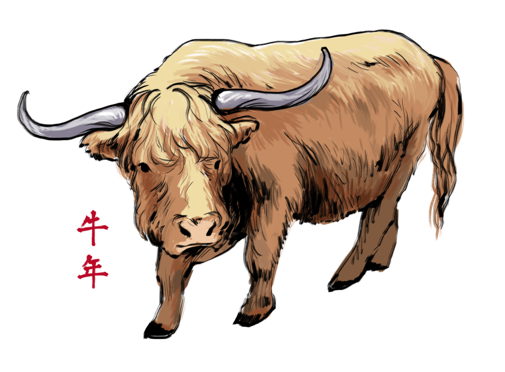 Ox clipart cattle. Cow by kytcordell on