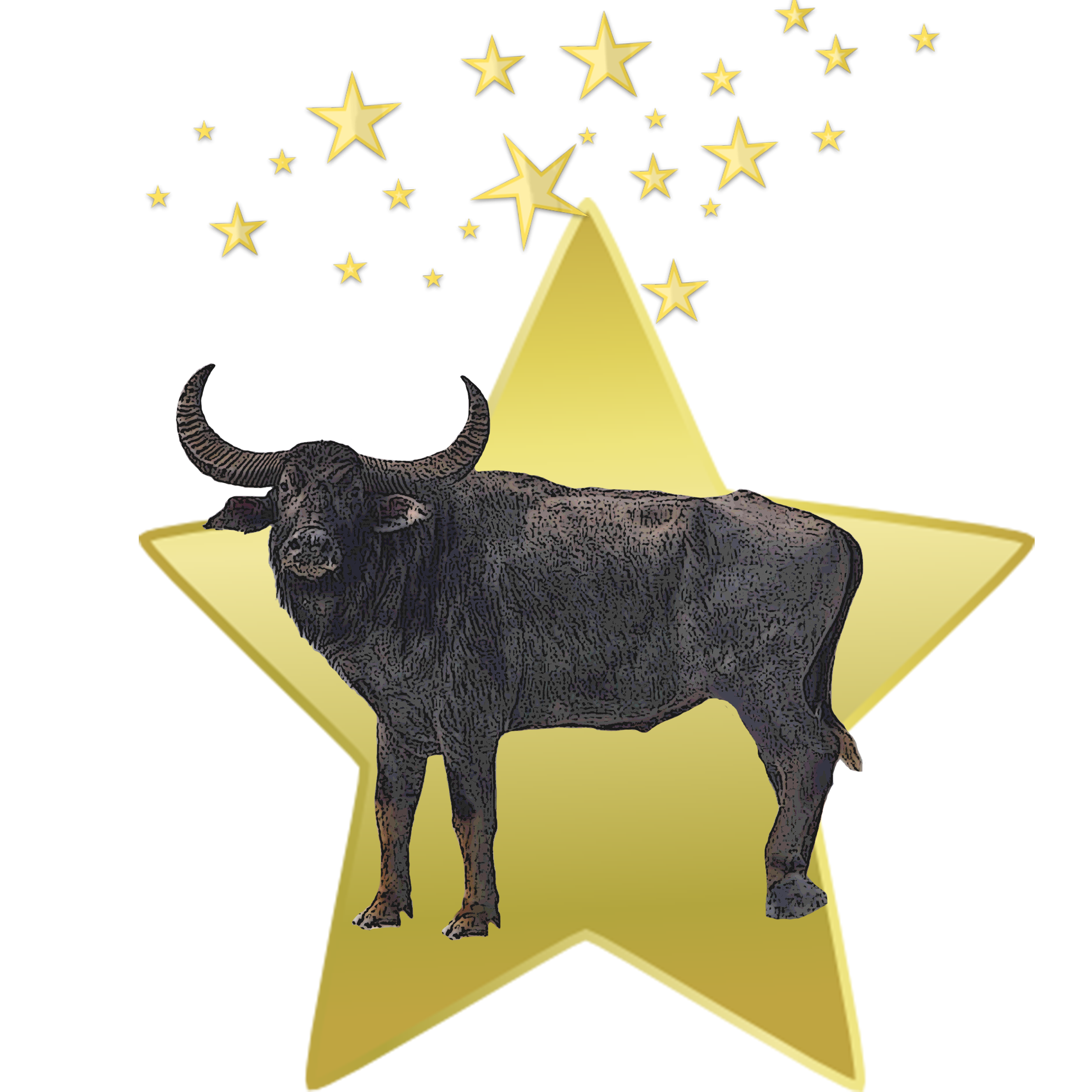 Ox clipart fat sheep. All black moon kittysol