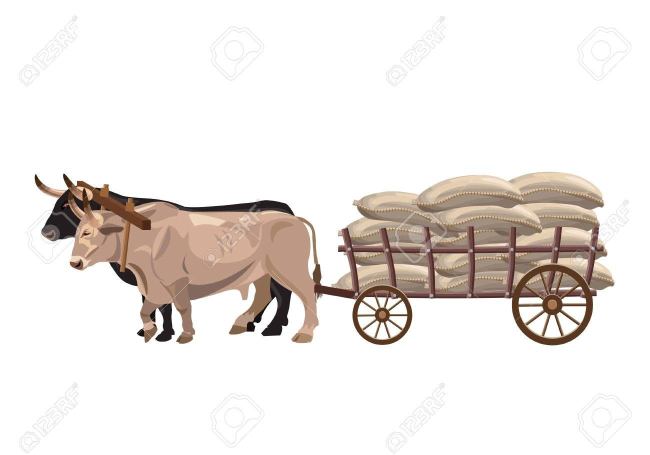 Pioneer clipart bullock cart. Image result for ox
