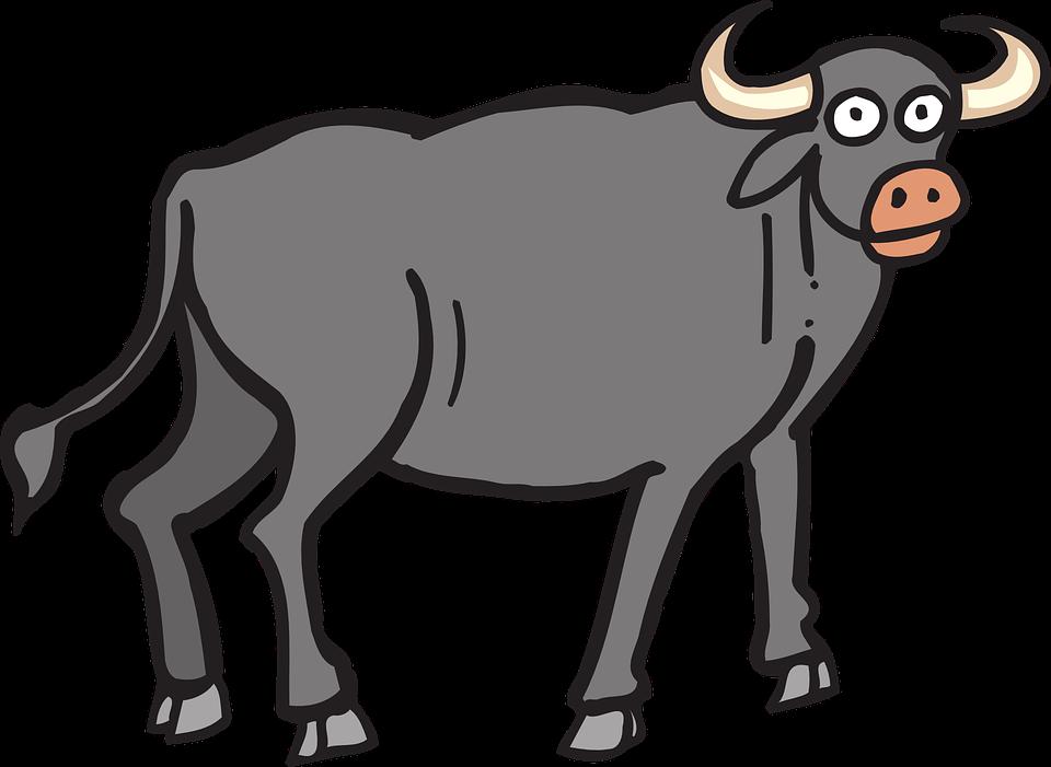 ox huge freebie. Buffalo clipart cape buffalo