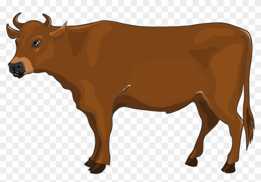 Boeuf hd png download. Ox clipart propensity